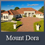 Mount Dora Homes for Sale
