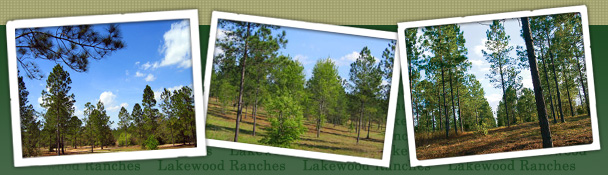LAKEWOOD RANCHES EQUESTRIAN COMMUNITY